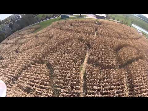 Farm Haven Corn Maze Chase