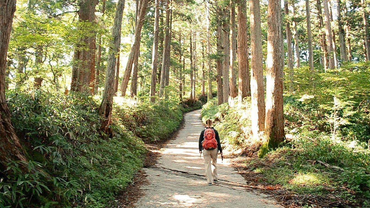 Вымирающая деревня в Японии. Уникальные кадры| Япония| Серия 21