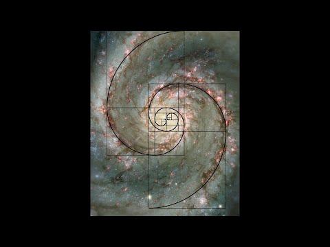 Fibonacci Sequence - Documentary