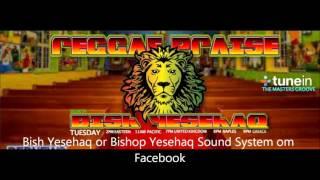 Bishop Yesehaq Christmas Show 2015
