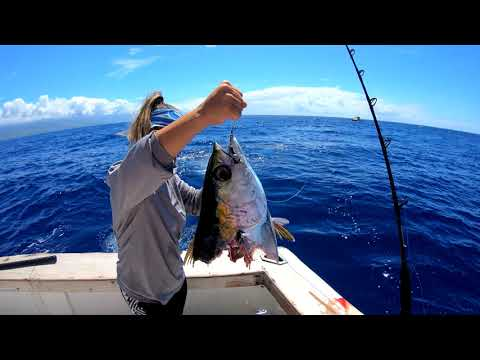 Deep Sea Fishing In Hawaii (tuna & Mahi Mahi)