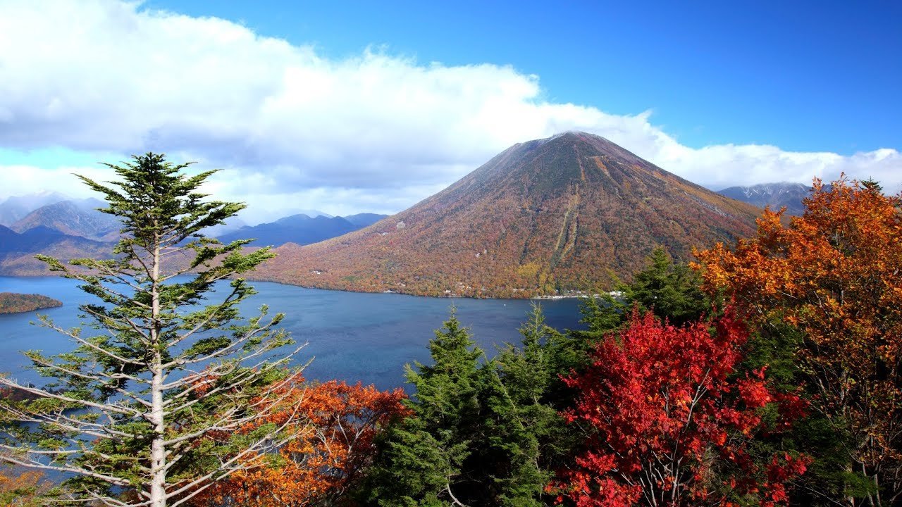 tours tokyo nikko national park trip from