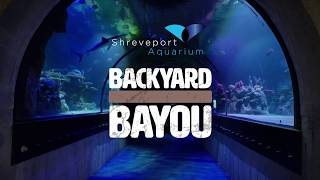 Backyard Bayou - Shreveport Aquarium