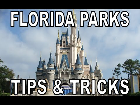 Ultimate Tips & Tricks for Florida's Theme Parks