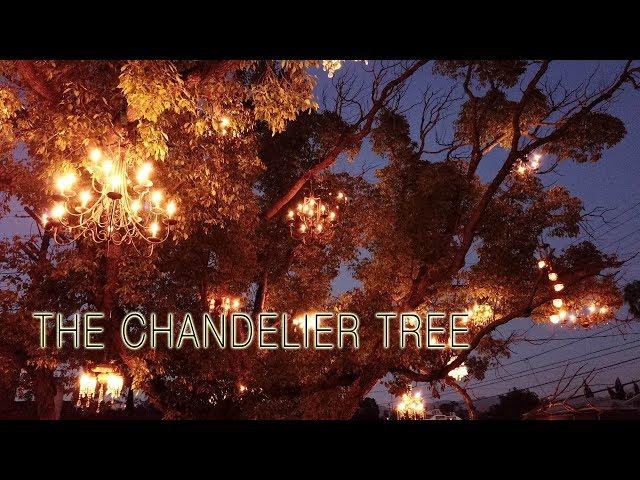 Silver lake chandelier tree to go dark over permit problems silver lake chandelier tree to go dark over permit problems updated the eastsider la aloadofball Images