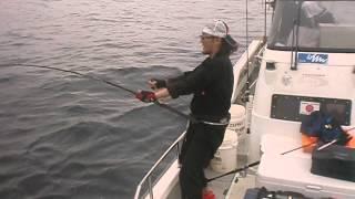 the 日本海 シャークvs秋 釣