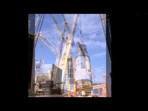Heavy Crane Division-Avi Cranes