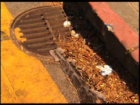 Wastewater and San Francisco