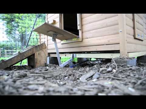 Automatic Chicken Coop Door Youtube