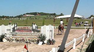 Kricket - Low Jumper Round - Horse Shows by the Bay