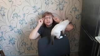 Невский маскарадный кот ЙОСЬКА. ПростоДень.
