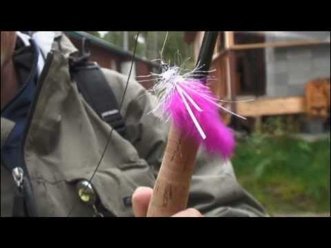 Fiskemagasinet Laksefiskeri i Alaska 1