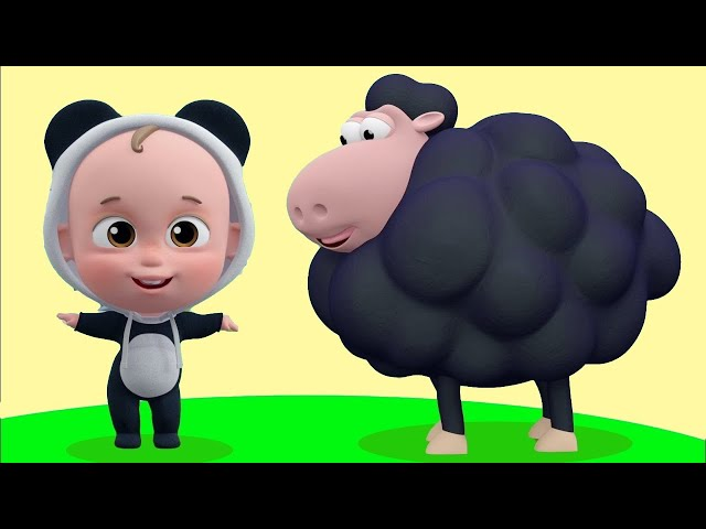 Kara Koyun Şarkısı - En Güzel Bebek Şarkıları - Koyunlar Renkleri Öğretiyor