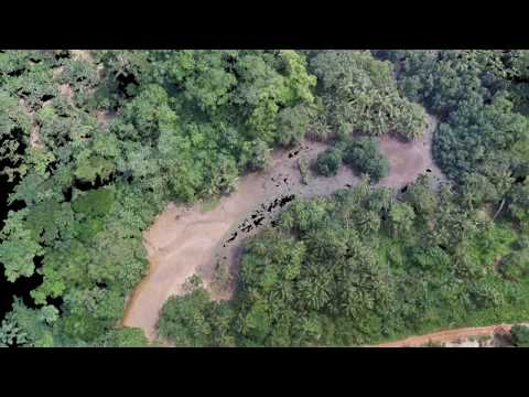 Principe drone 3D map Mix -  Island Biology Conference  2016