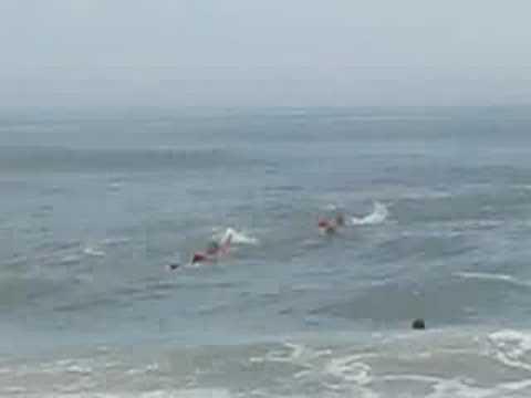 Chincoteague Va Beach Rescue Video On Ateague Island