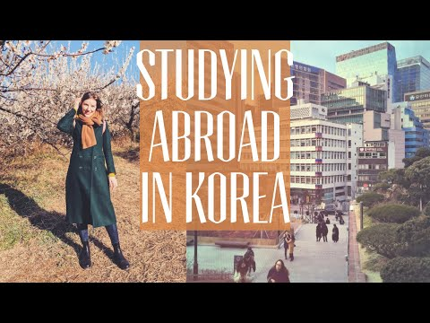 Things nobody tells you about studying abroad in Korea 😳📚✏️🤯