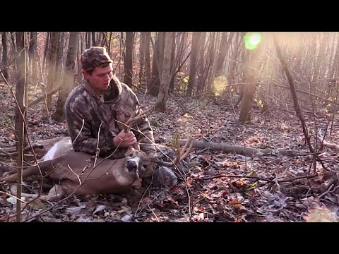 Ohio Bruiser | Destination Whitetail