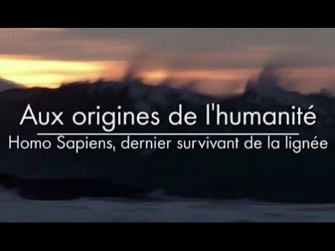 Aux origines de l'humanité - Homo Sapiens, dernier survivant de la lignée [3/3]