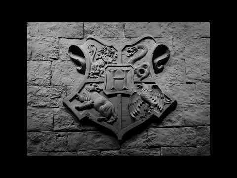 Livre Audio Harry Potter A L Ecole Des Sorciers Chapitre 1