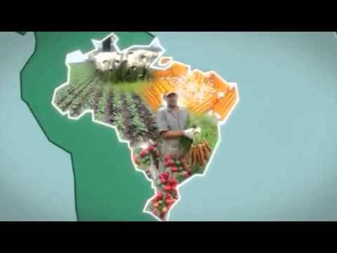Knowledge Exchange Minute #2: Africa-Brazil Agricultural Innovation Marketplace