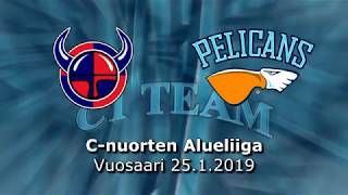 Pe 25.1.2019 Viikingit Team - Pelicans C1 Team