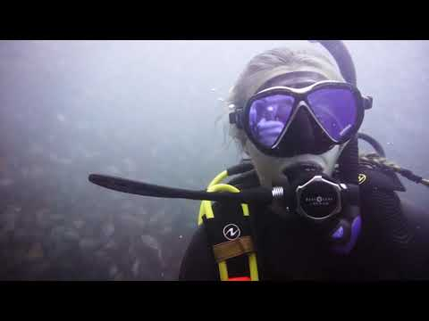 Mimi and Jules go diving: the first attempt at a sellable video