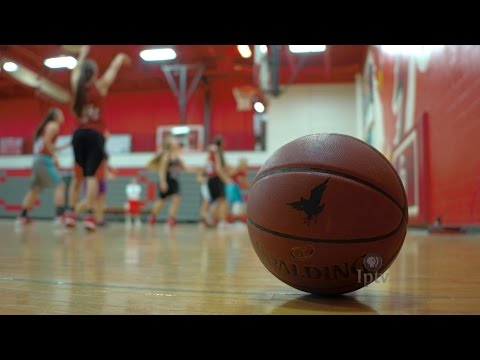Central Decatur Cardinals | 2017 Girls Basketball