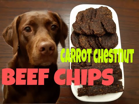 Healthy Homemade Dog Treat- Beef Chips