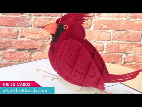 3D Popup Cards Bird