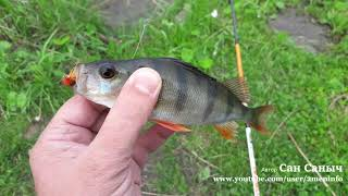 Выходные не без рыбалки