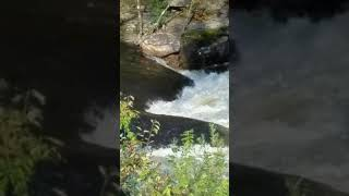 Neversink River Rapids In Fallsburg New York Presented By Closeoutexplosion.com