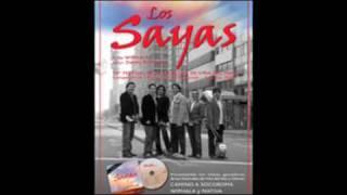 Camino a Socoroma, Los Sayas (2009)