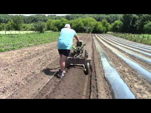 видео: Самодельный грядообразователь для клубники. Аgropitomnik.com.ua