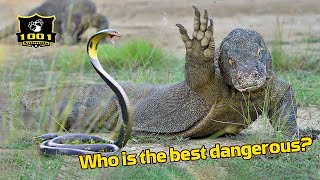 🔥The 9 Most Dangerous Animal Predators In Animal Kingdom | 1001 Animals