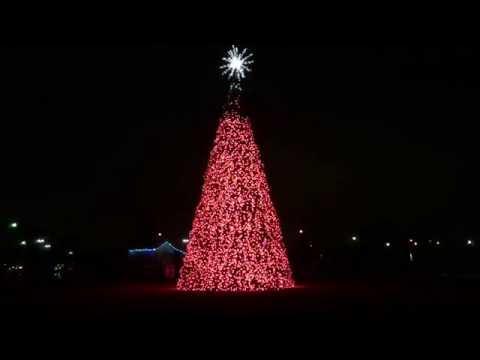 Christmas tree Light show for Music