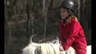 Martin`s Hästvideo