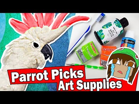 MY PARROT PICKS MY ART CRAFT SUPPLIES Challenge Super Smash Bros DIY