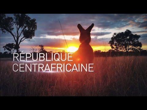 L'incroyable République centrafricaine