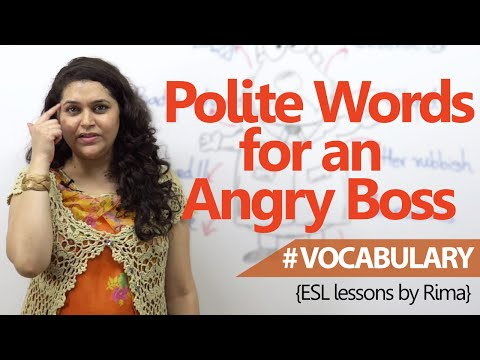 Business English Lesson  - Polite words that are useful for angry bosses ( Learn English Vocabulary)