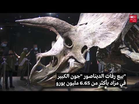 بيع رفات الديناصور