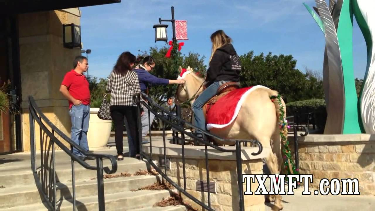 riding christmas horses at the mall for black friday callie and legend standing up on horses - Christmas Horses