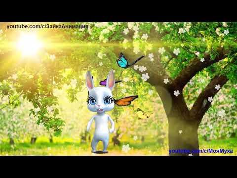 ZOOBE зайка Весеннее Поздравление  В прекрасный этот день весны - Как поздравить с Днем Рождения