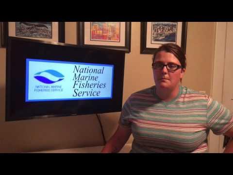 Informative Speech on Federal Fishing Regulatory Agencies