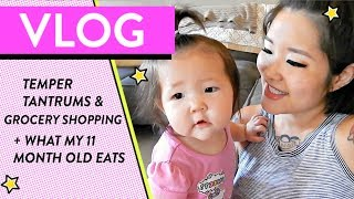 Baby Tantrums, Grocery Shopping & What My 11 Month Old Eats | A Day in the Life of a SAHM