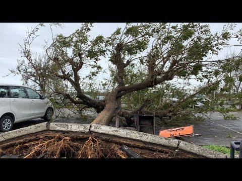 إعصار عنيف يضرب موزامبيق..صور وشهادات  - نشر قبل 3 ساعة