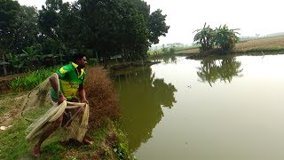 Net Fishing | Catching Fish With Cast Net | Net Fishing in the village (Part-51)