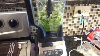 Ninja 1100 Blender Making Salsa  Pt. 1