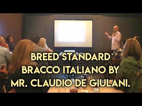 [Dog Show] Breed Standartd Bracco Italiano by Mr. Claudio De Giulani - Italy