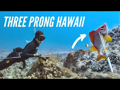 Three Prong SPEARFISHING Hawaii (SAM'S NEW SPEAR!!!)