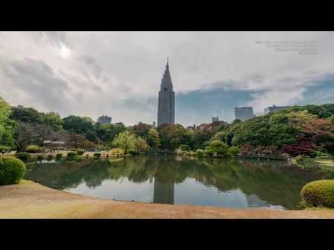 4K Timelapse / Shinjuku Gyoen National Garden. Nov. 24, 2014